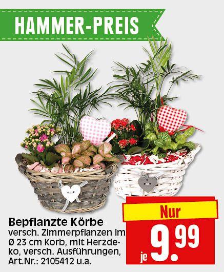Mein Markt Herkules Bau Garten Markt